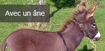 Randonnées avec un âne