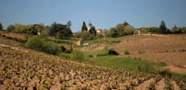 vacances à vélo en Bourgogne